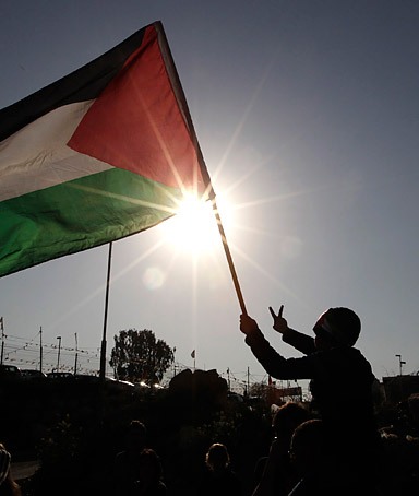Palestine quote #3