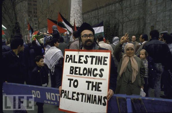Palestinian quote #2