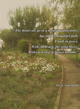 Path quote #7