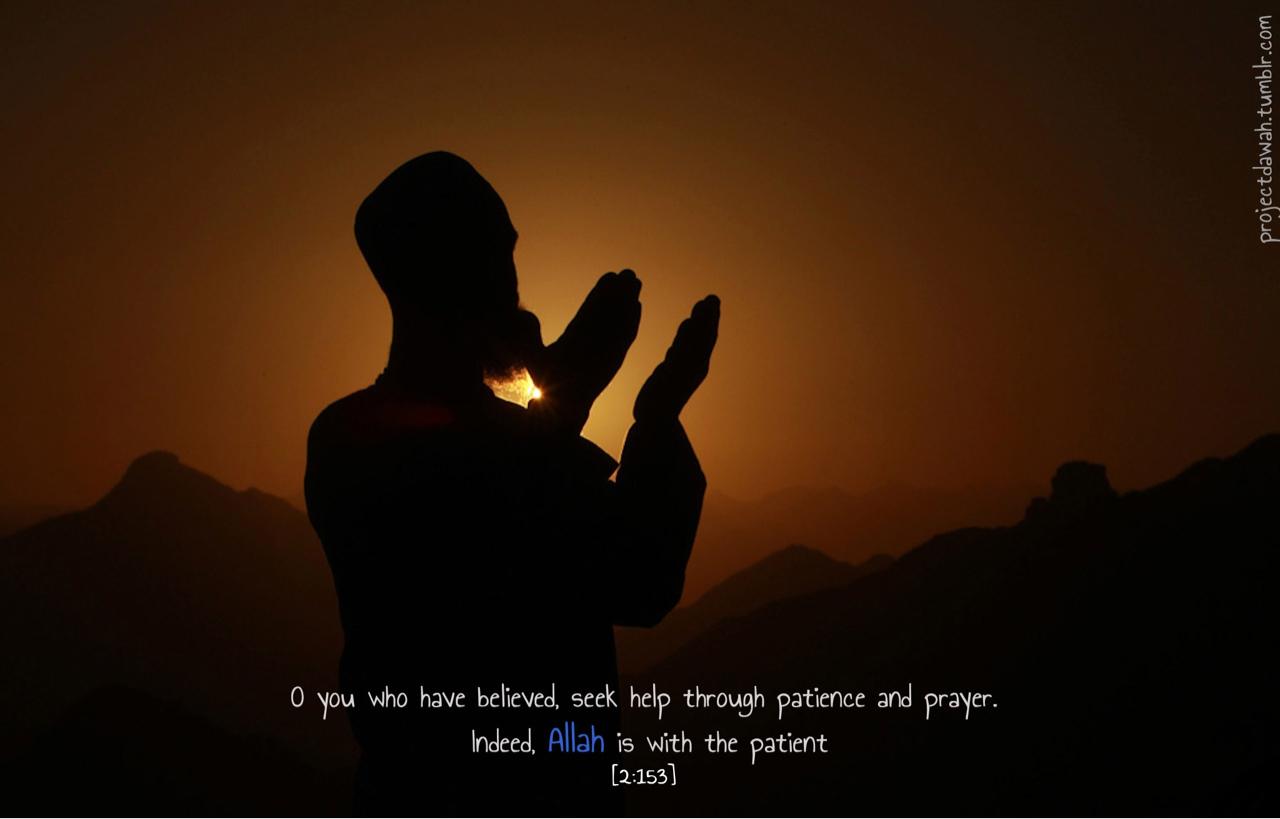Patient quote #3