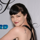 Pauley Perrette's quote #5