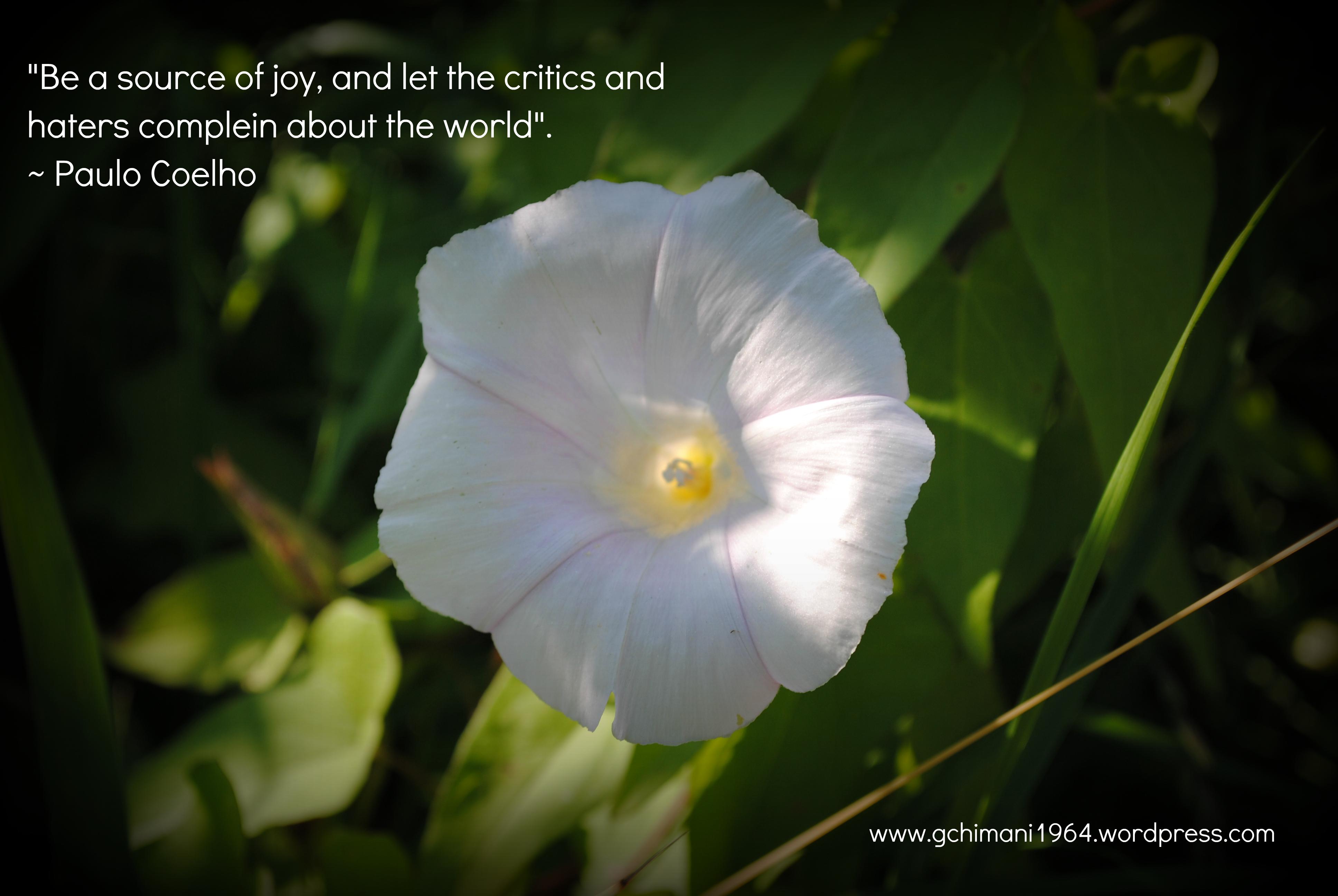 Paulo Coelho's quote