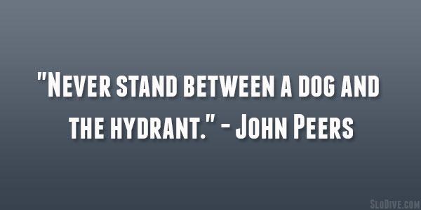 Peers quote #1
