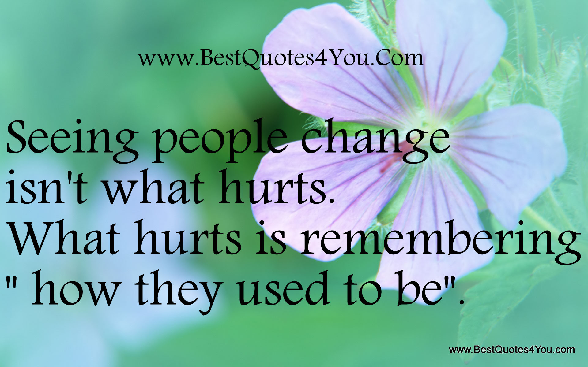 Famous Quotes About People Change Sualci Quotes