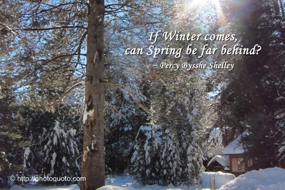 Percy Bysshe Shelley's quote #4