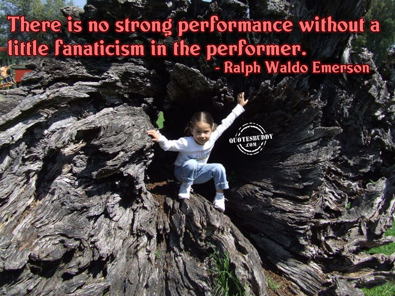 Performer quote #8