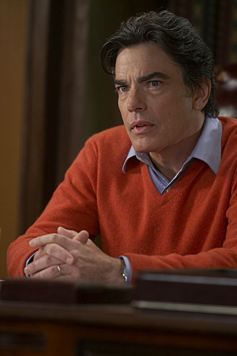 Peter Gallagher's quote #4