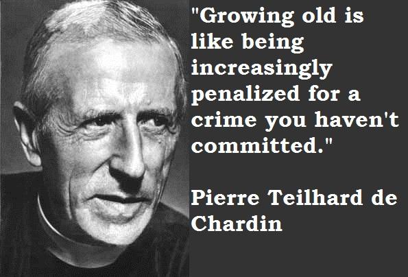 Pierre Teilhard de Chardin's quote #7