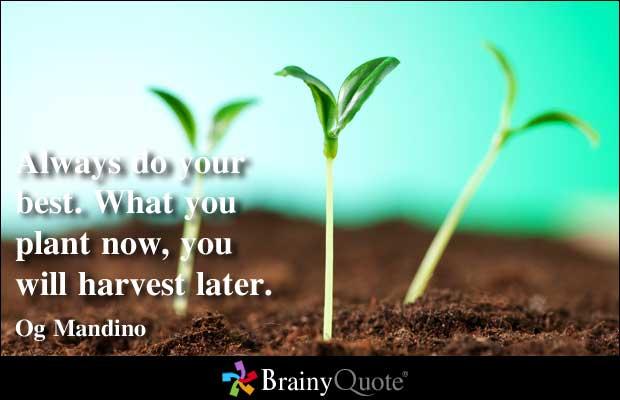 Plant quote #6