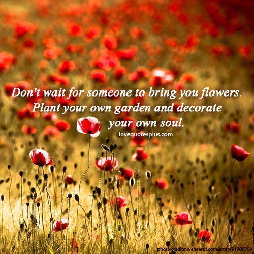 Plant quote #3