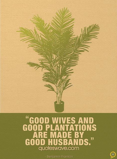Plantations quote #1