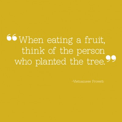Planted quote #1
