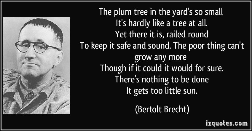 Plum quote #1