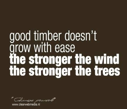 Practice quote #5