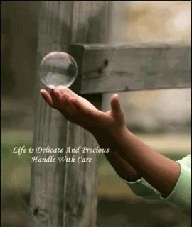 Precious Life quote #2