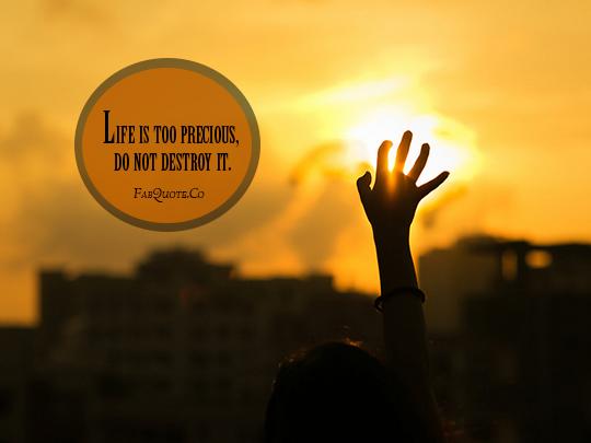Precious Life quote #1