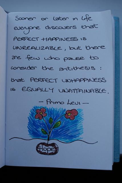 Primo Levi's quote #1
