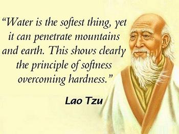 Principle quote #2