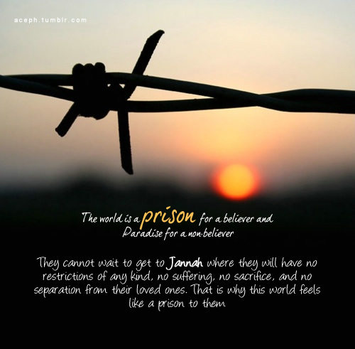 Prison quote #2