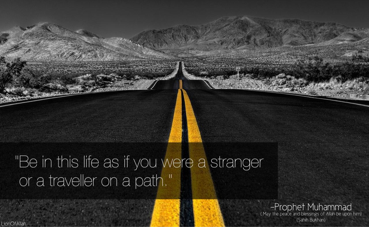Prophet quote #3