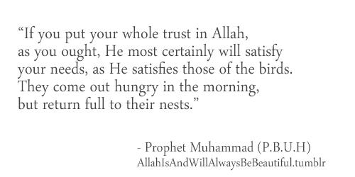 Prophet quote #2