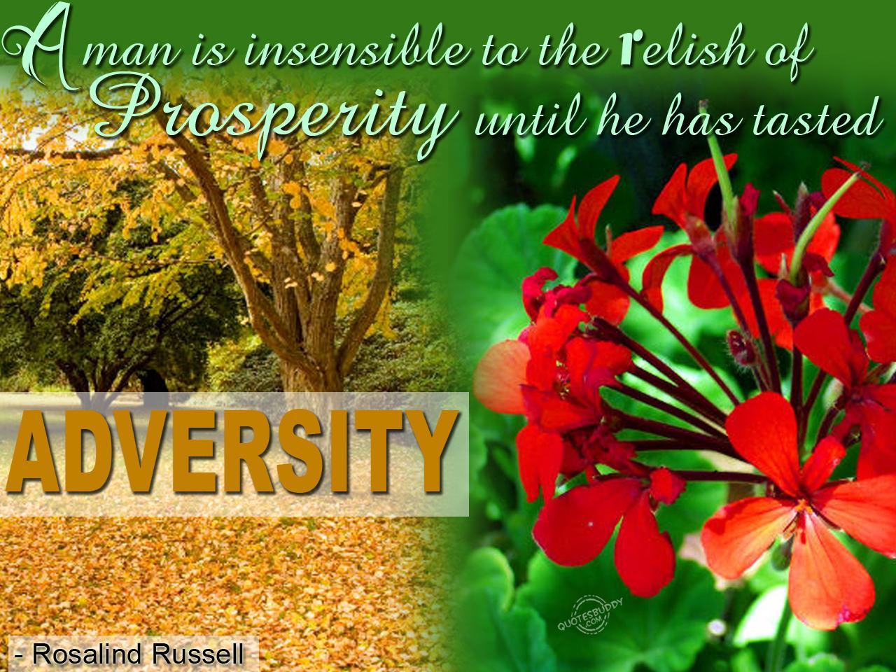 Prosperity quote #5