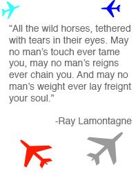 Ray LaMontagne's quote #1