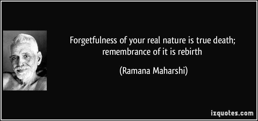 Rebirth quote #1