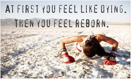 Reborn quote #2