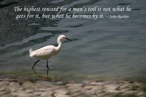 Reward quote #5