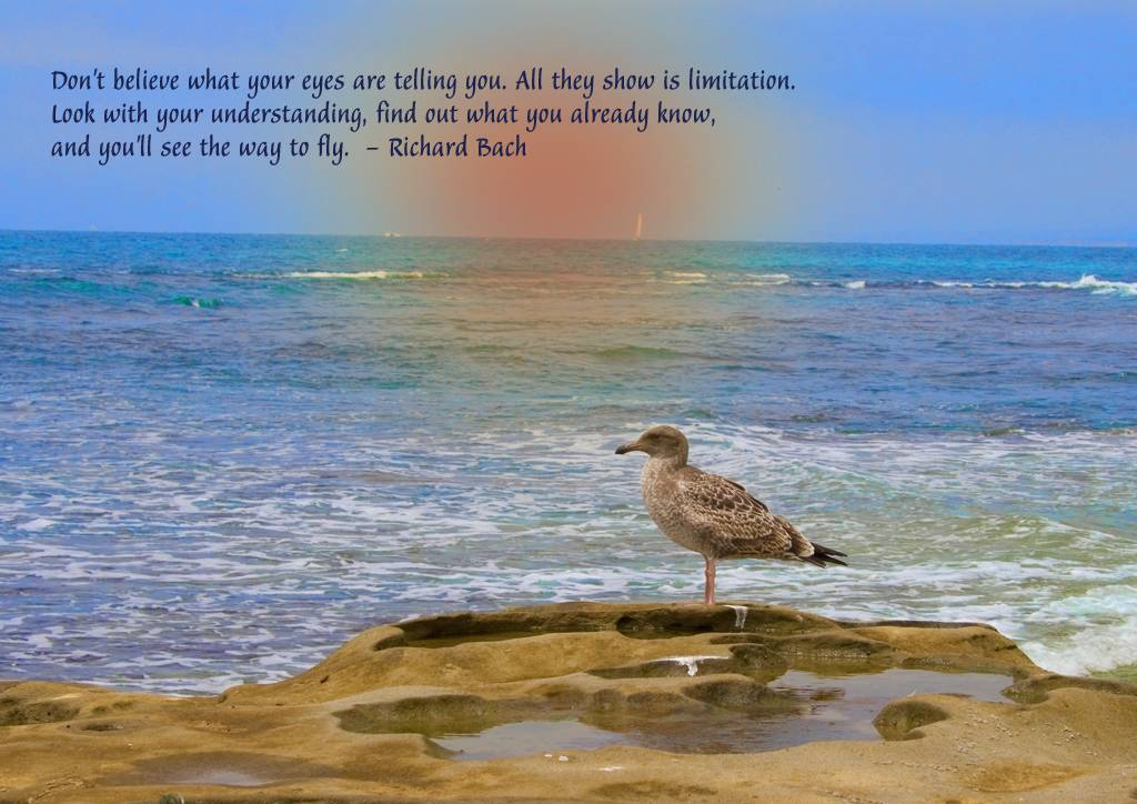 Richard Bach's quote #6