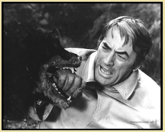 Richard Donner's quote #7