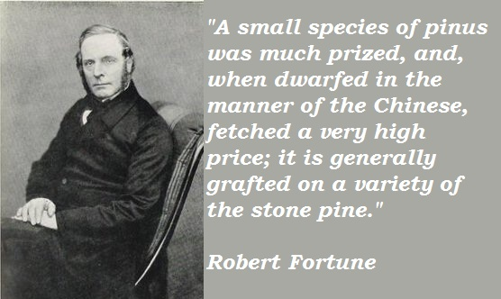 Robert Fortune's quote #1