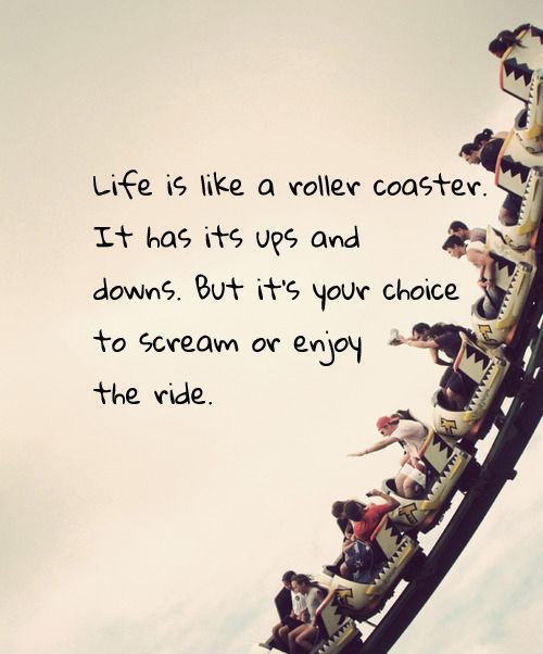 Roller Coaster Ride quote #1