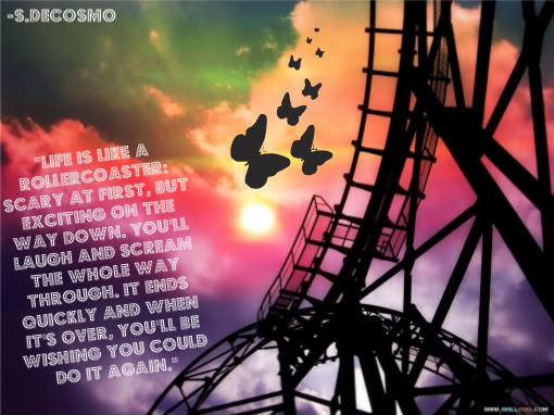 Rollercoaster quote #1