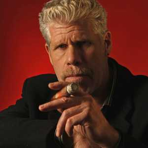 Ron Perlman's quote #2