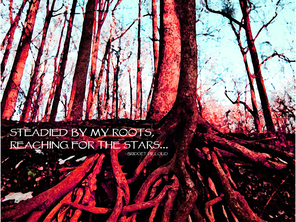 Roots quote #7