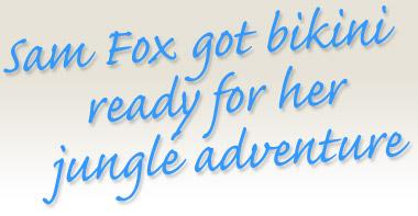 Samantha Fox's quote #1