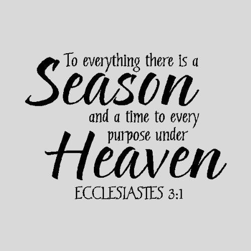 Season quote #7