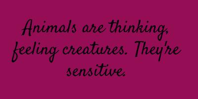 Sensitive quote #4