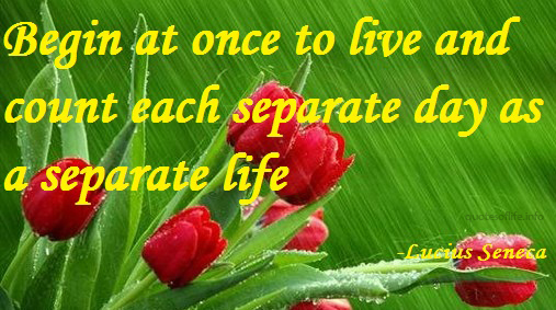 Separate quote #5