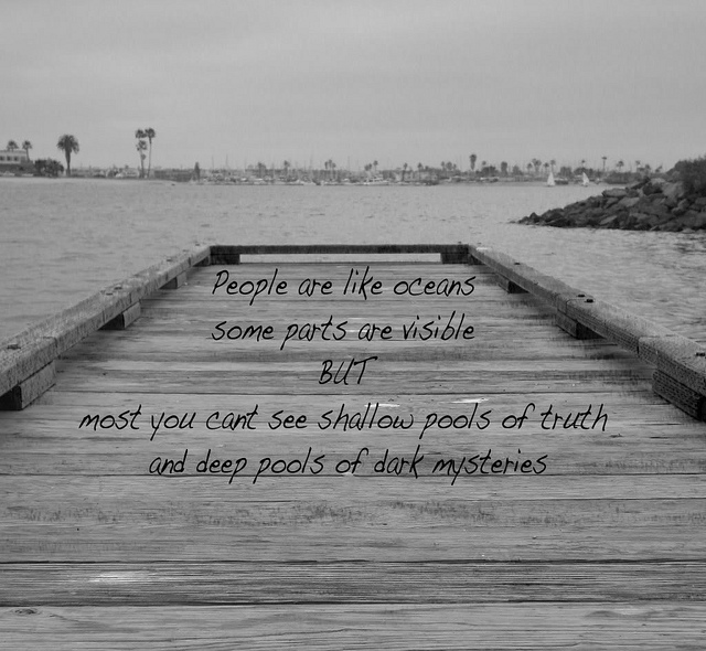 Shallow quote #7