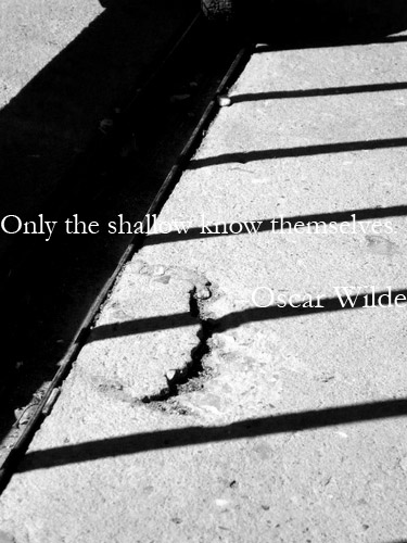 Shallow quote #2