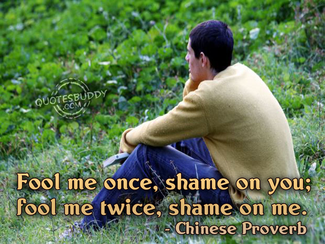 Shame quote #6