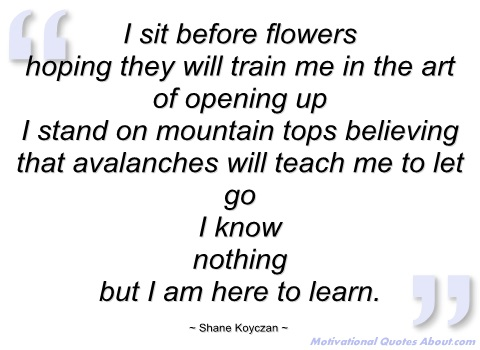 Shane Koyczan's quote #5