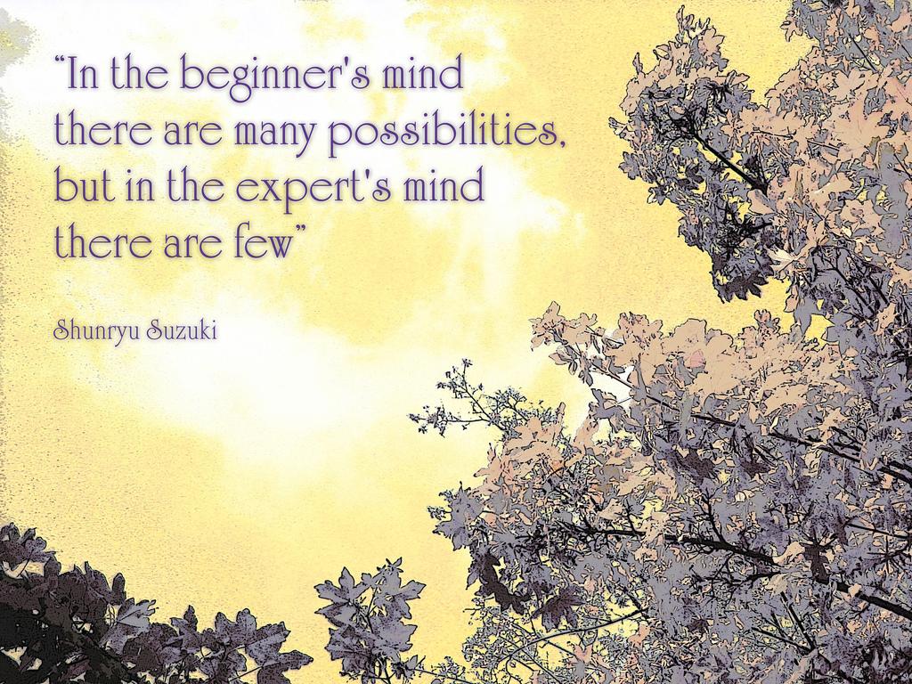 Shunryu Suzuki's quote #5