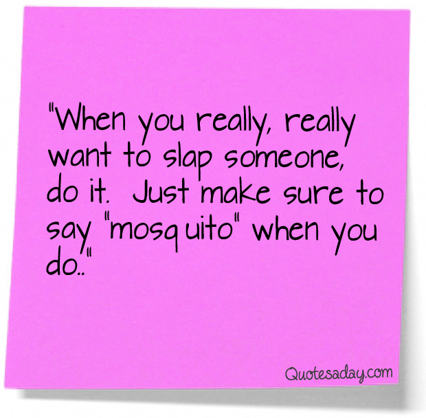 Slapped quote #1
