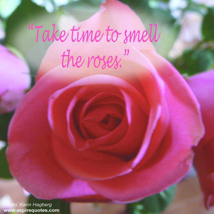 Smelling quote #2