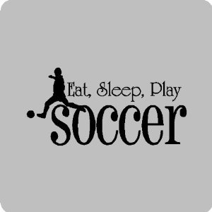 Soccer quote #8