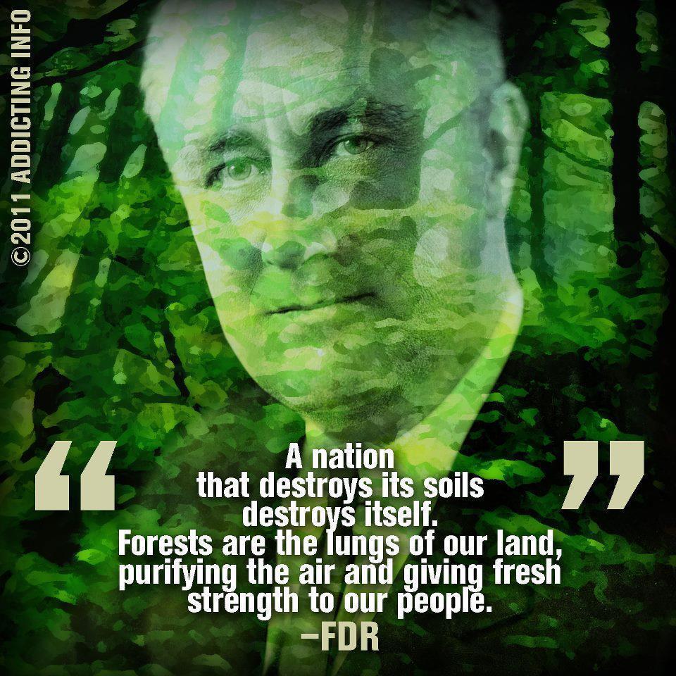 Soil quote #3